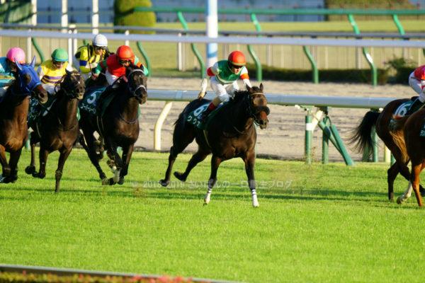 [ククナ] 2歳10月 3戦目 アルテミスSを東京競馬場で現地観戦 11