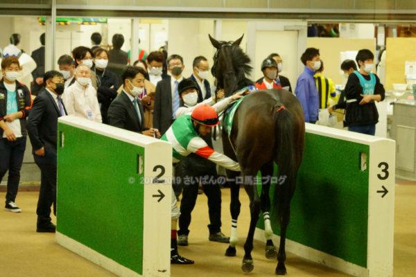 [ククナ] 2歳10月 3戦目 アルテミスSを東京競馬場で現地観戦 18