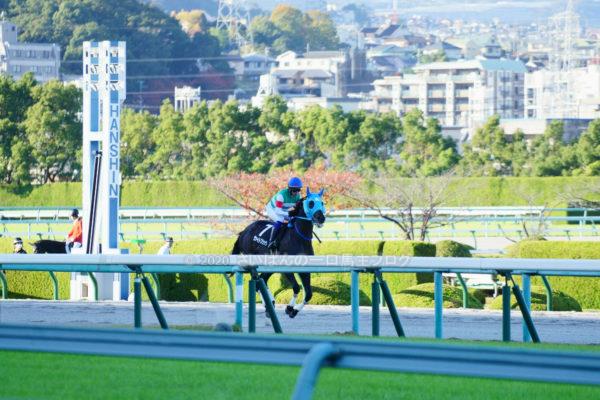 [ヴァイトブリック] 4歳11月 13戦目 摩耶Sを阪神競馬場で現地観戦 5