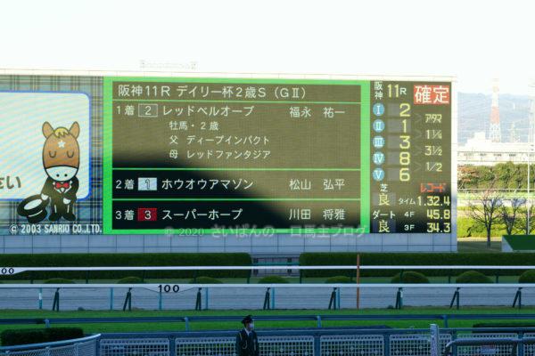 [レッドベルオーブ] 2歳11月 3戦目 デイリー杯2歳Sを阪神競馬場へ現地観戦